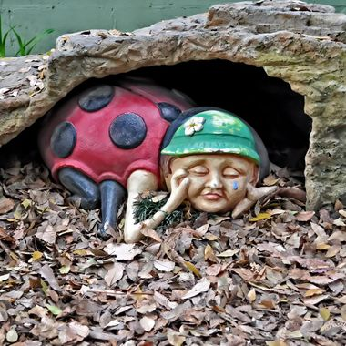 Ladybug, Ladybug, your children are all gone but one, lies under a stone.  Children's nursery rhyme.