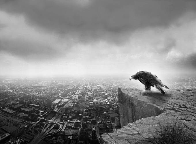 The guardian by michelvisipsky - Image of the Year Photo Contest by Snapfish