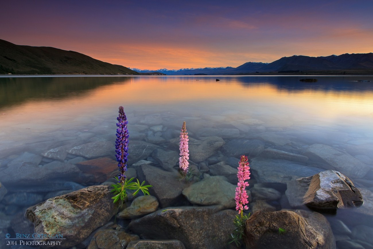 Behind The Lens: Lake Tekapo, New Zealand