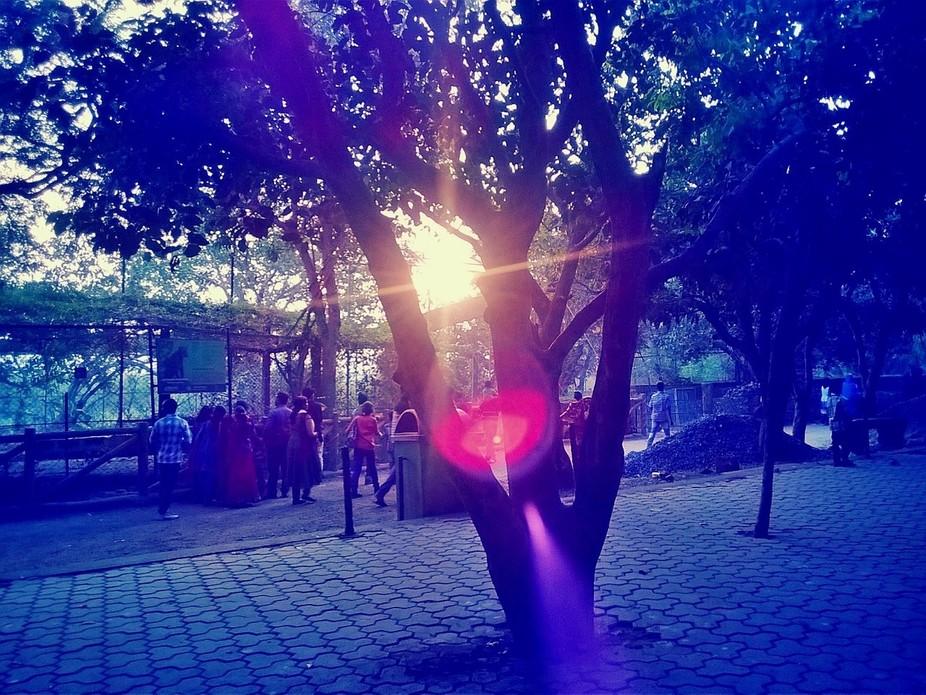 Camera360_2014_1_1_043744
