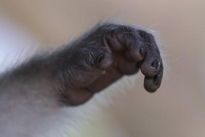 grab my hand