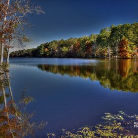 Rflections of autumn on Beaver Lake near Fulton Ms.