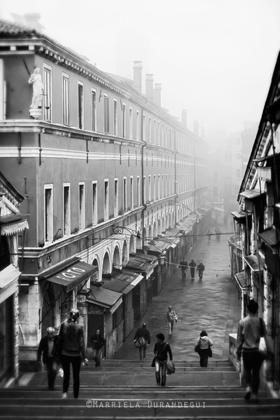 A Foggy Morning begins..
