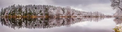 Winters Reflection!