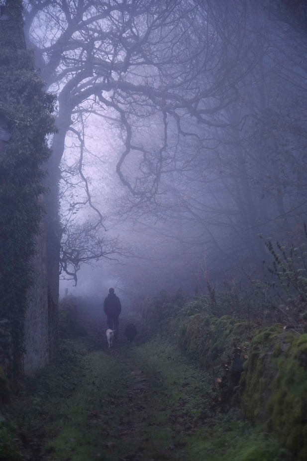 EARLY MORNING FOG by alanclimb - A Walk In The Mist Photo Contest
