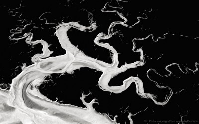 The Challenge Was Abstract In Nature _ Pat Corlin Photography