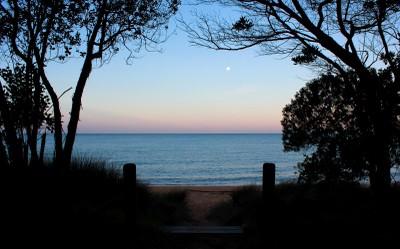 Bark Bay silhouette
