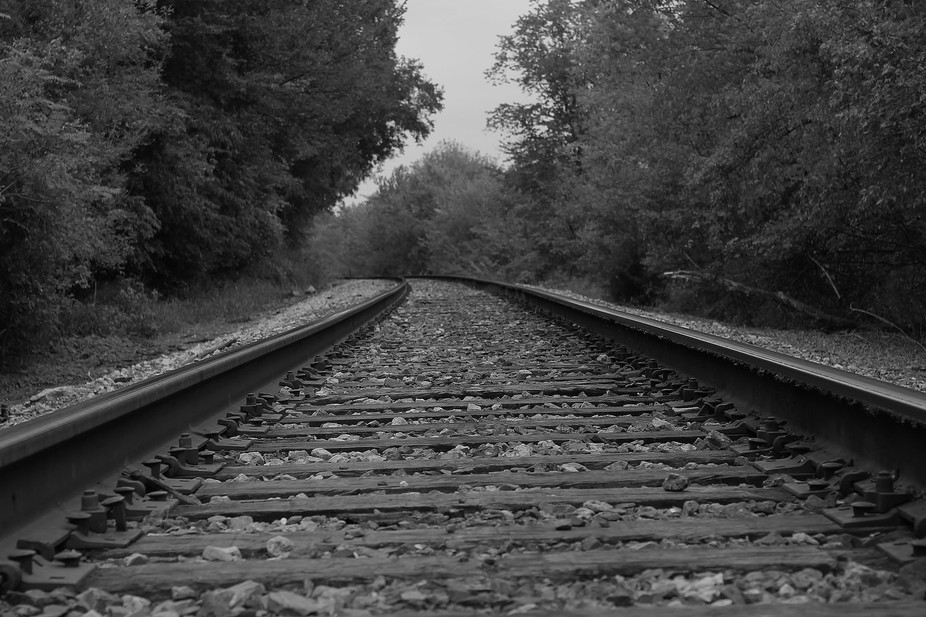 Taken in Burlington, IA. along a trail at the edge of a park. These tracks run along the Mississi...