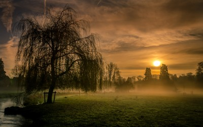 Late Autumn Sunrise in the Cotswolds