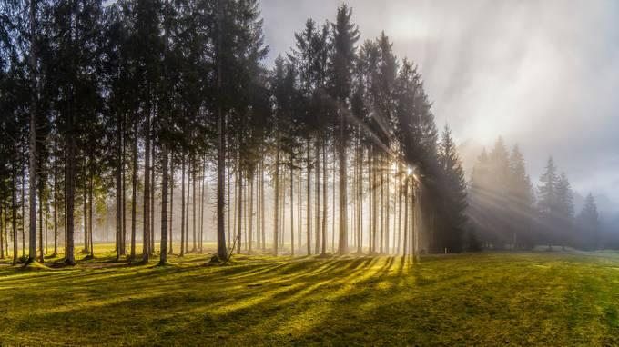 Sunray by clickpix - Dodho Volume 4 Photo Contest