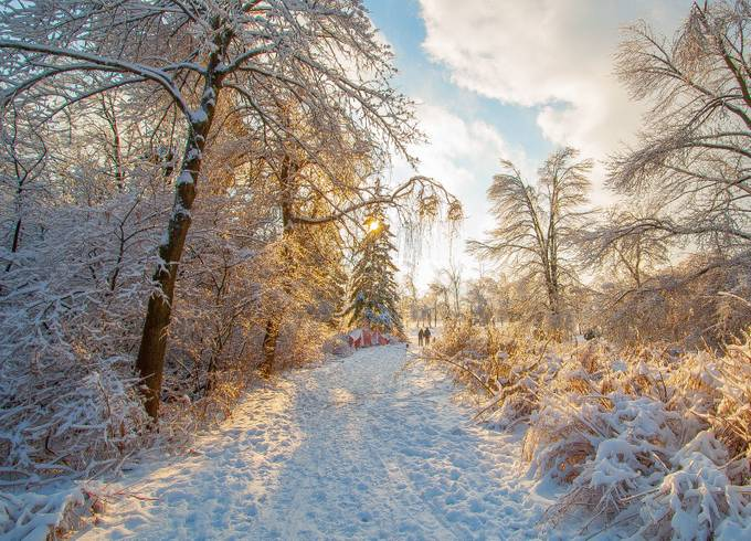 Winter magic by JohnStager - Country Roads Photo Contest