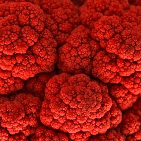Macro photo of what was originally a green cauliflower. Processed with deep red tones for a more romantic atmosphere. If you look closely enough,...