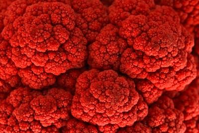 Cauliflower Kiss