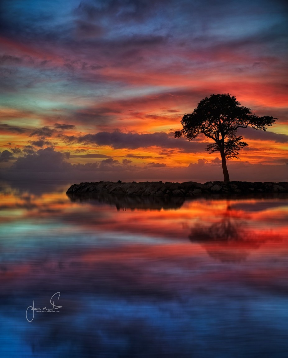 Lana-II by jasonmatias - Silhouettes Of Trees Photo Contest