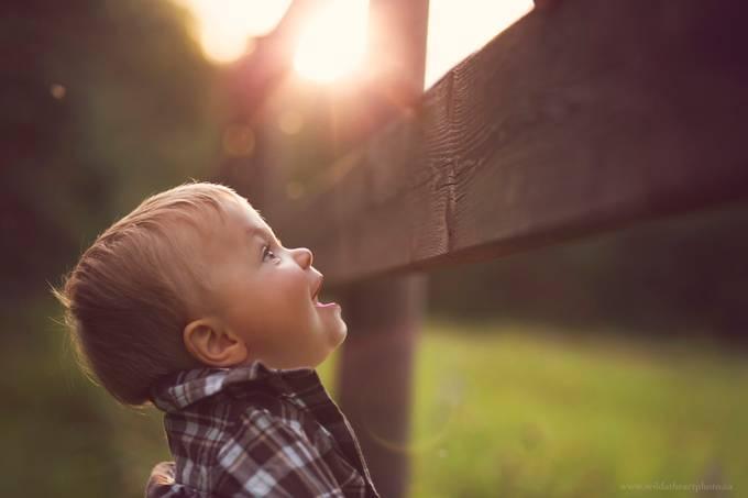 Wonder by caitlynblake - Rails and Fences Photo Contest