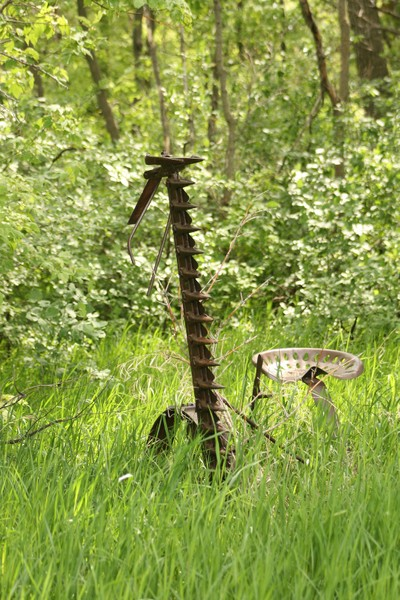 Antique Grass Cutter in a field