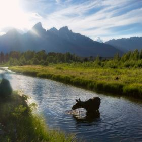 While stopped in the grand tetons for a couple of unforgettable days on a coast-to-coast road trip we coined
