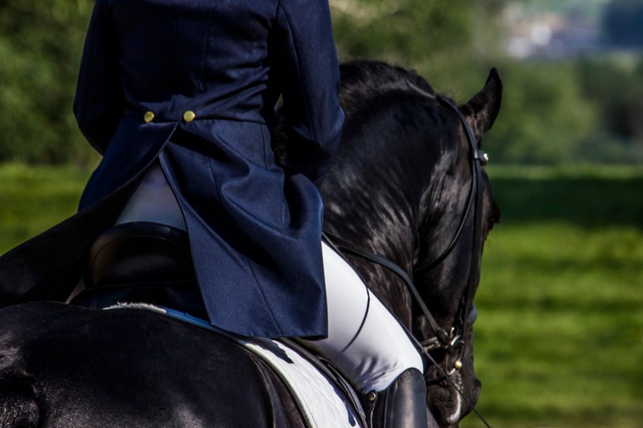 Detail of a rider on a Friesian horse during a dressage competition