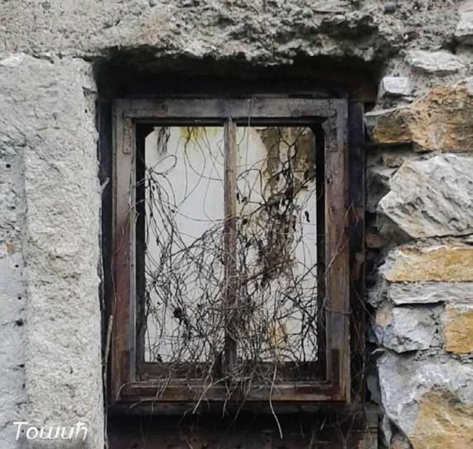 abandoned,architecture,art