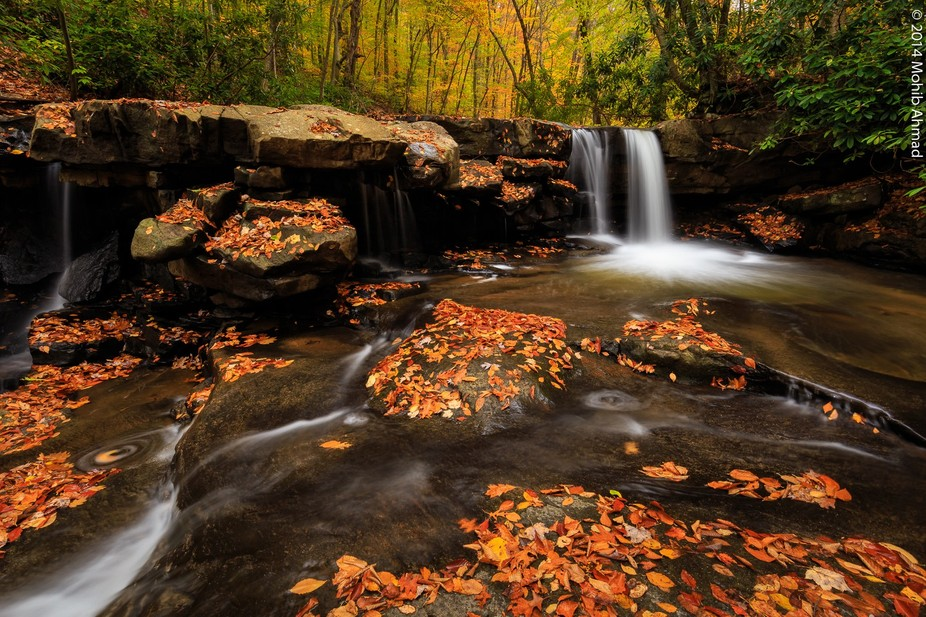 I spent a few hours hiking the Jonathan Run trail last October in the Ohiopyle State Park, PA. It...