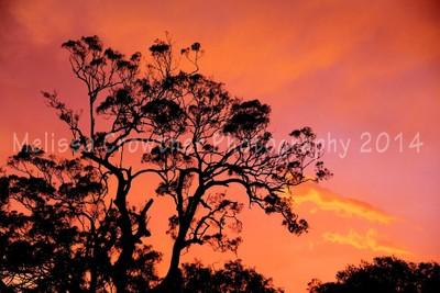 Sunset dec 30 2014