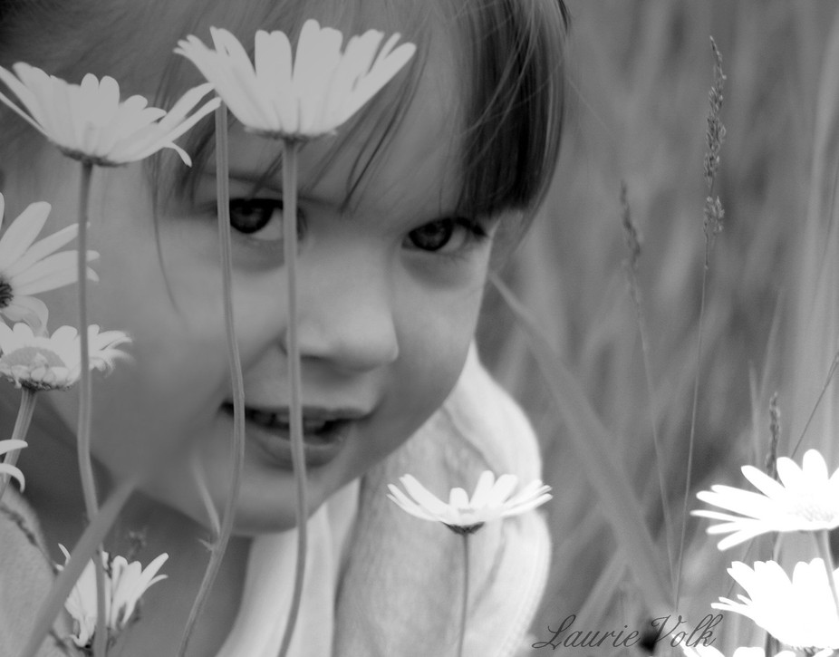 Creative lighting used for Monochrome portrait in field of daisies