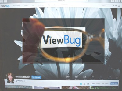 ViewBug 2014