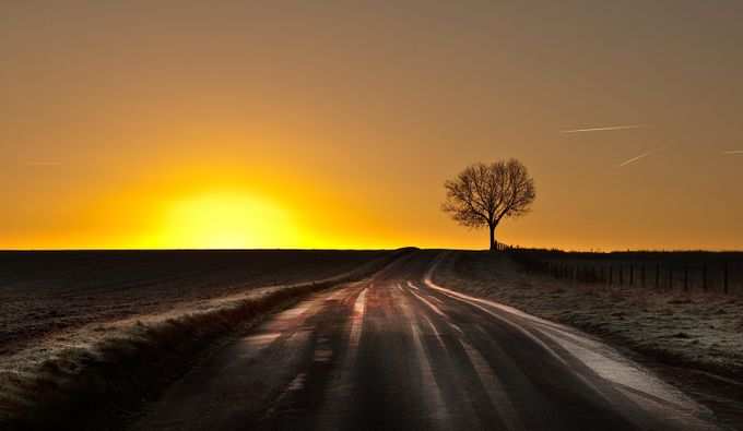 tree on the hill by wolfman57 - Country Roads Photo Contest