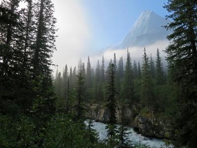 Mount Robson Mist