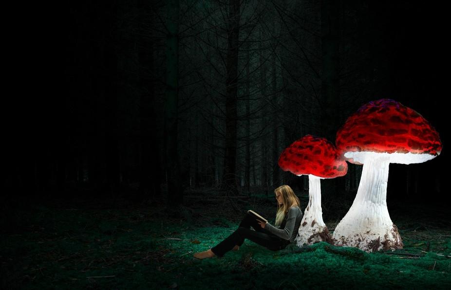 Mushroom reader