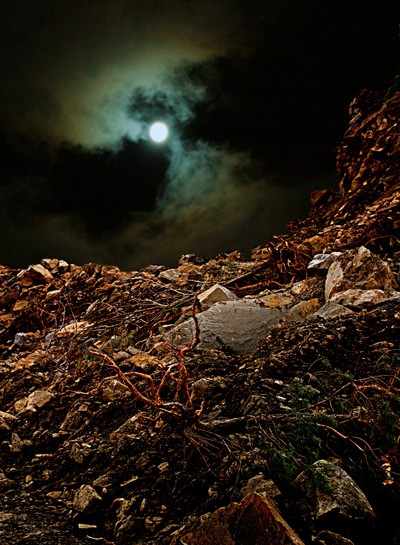 Night Landscape 1