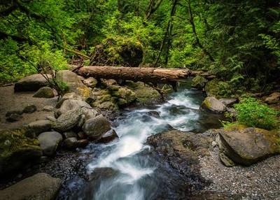 Multnoma Creek 01