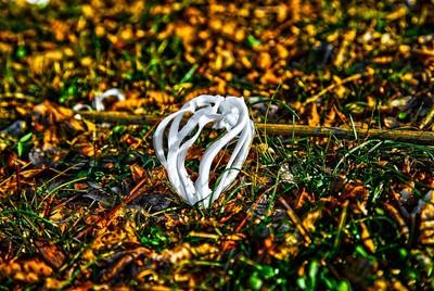 Nature Ice Art