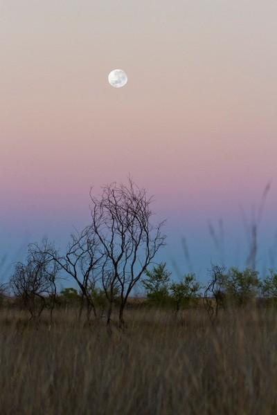 Moonset @ Sunrise