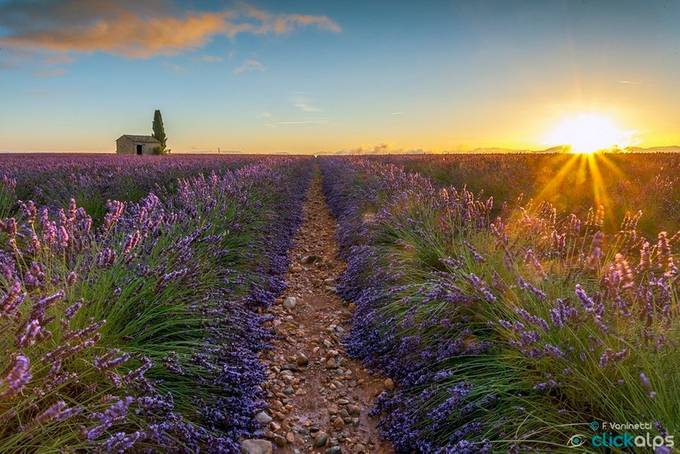 Sunrise in Provence II by francescovaninetti - Sun Flares Photo Contest