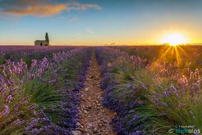 Sunrise in Provence II