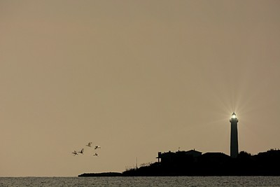 Lighthouses silhouette
