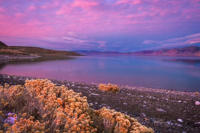 Pyramid Lake Glow