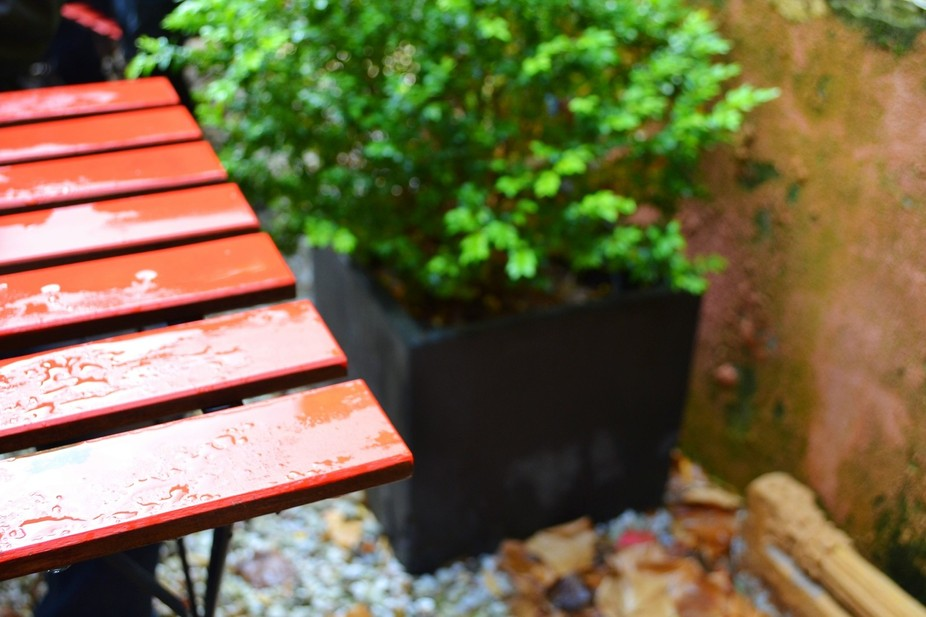 coffee in the rains