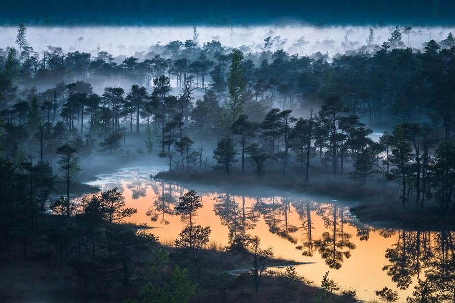 kemeri swamp in latvia