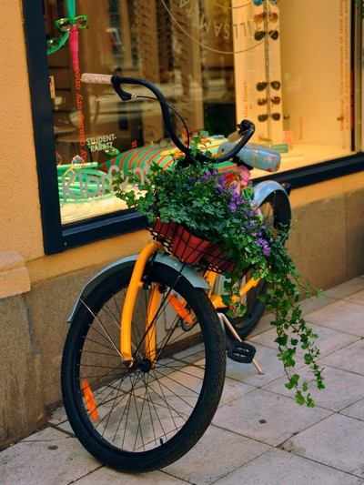 bicycle basket garden