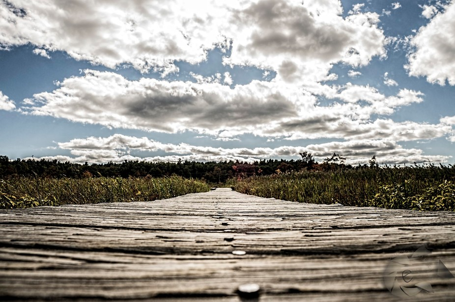 Bridge to the Clouds