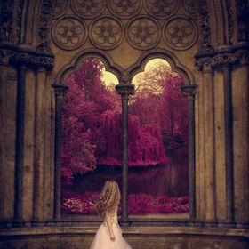 Westminster Abbey and Buckingham Palace Royal Gardens.  This photo is about looking at the world throughout rose-colored glasses~ the beauty of o...