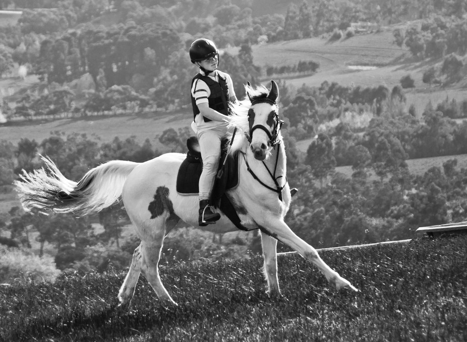 Hill top canter