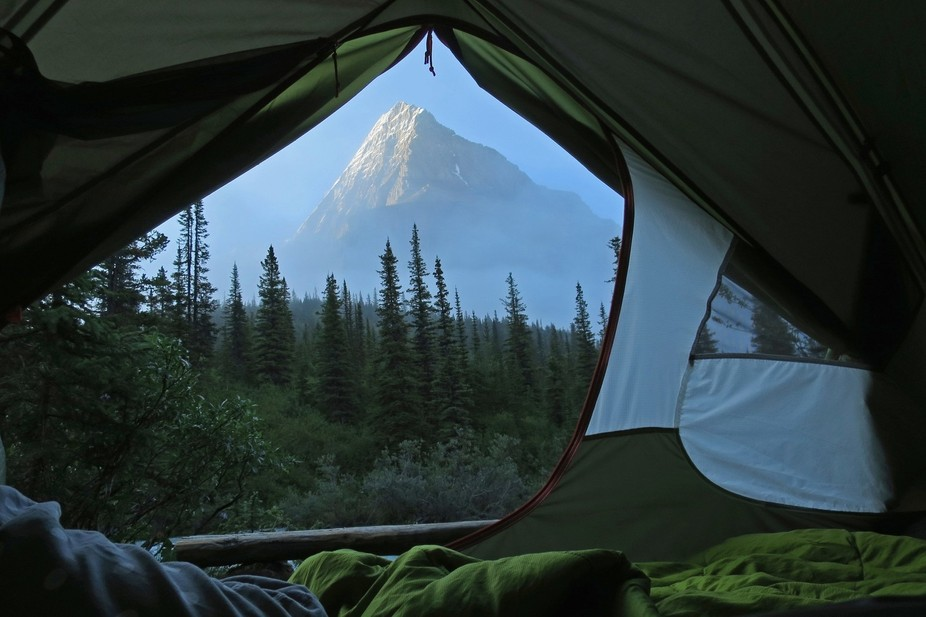 Mt. Robson towers over the forest in this view from the Emperor Falls campsite on the Berg Lake T...