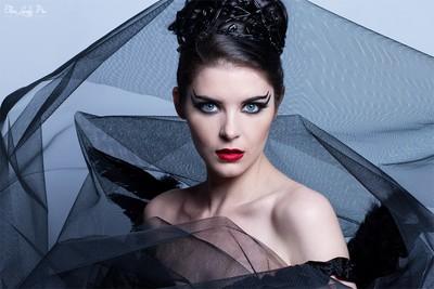 Black Swan Theorem