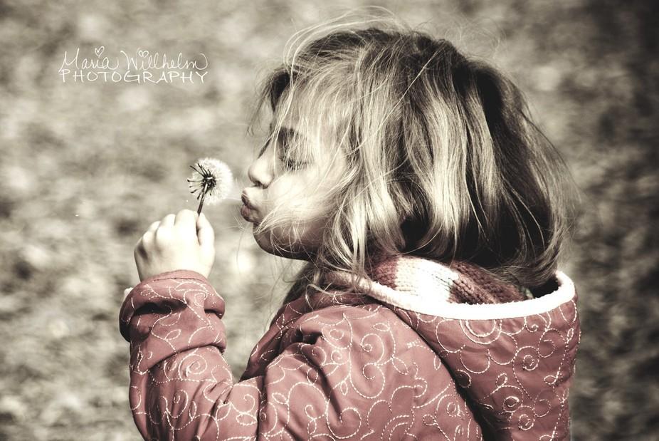 kissing_dandelion_by_cowboysgurl-d4iclsz