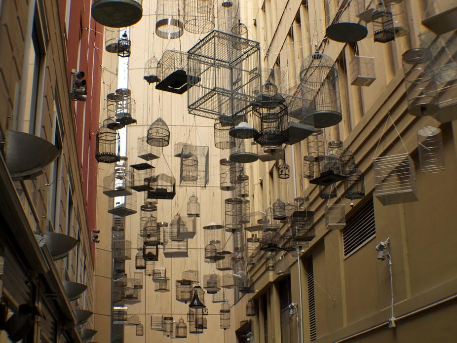 Art installation in Sydney