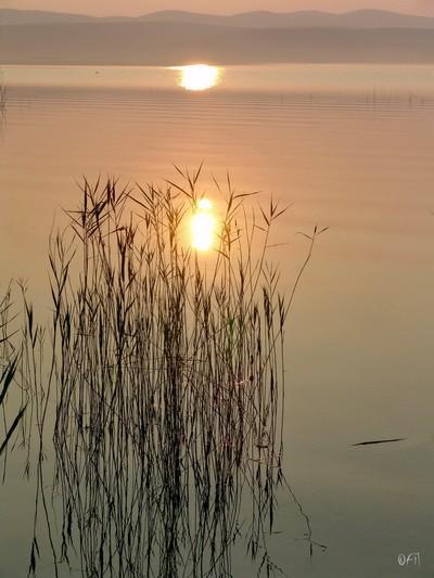 Lake Vrana Morning