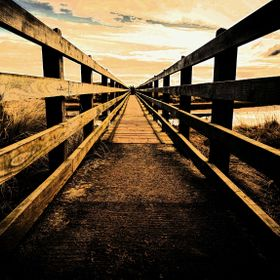 Bridge over marshland_pe